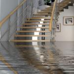 wet water damaged carpets